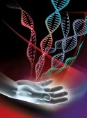 10396472-computer-artwork-showing-a-hand-and-double-stranded-dna-deoxyribonucleic-acid-molecules-dna-is-compo[1]