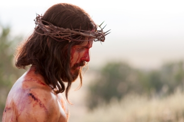 pictures-of-jesus-crown-thorns-1127729-gallery