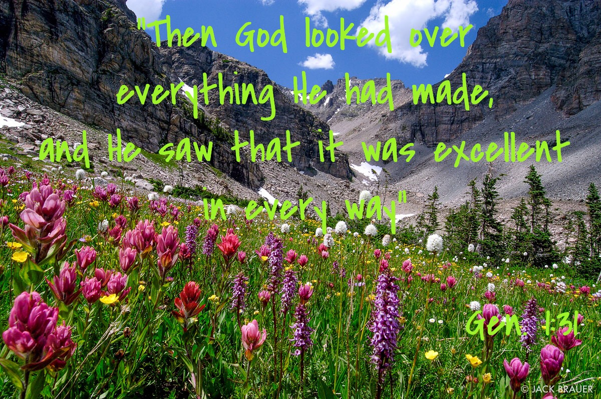 Image result for beauty of God's creation pictures